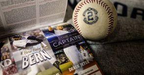 巧思沒有極限... 2015年球季 紐約洋基季票 開箱