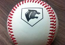 2014黑豹旗全國高中棒球大賽賽程表Ver.3