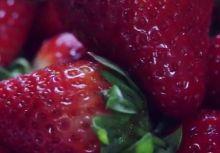 2015溫網用了多少草莓?