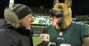 費城變「吠城」!  老鷹隊歡迎球迷戴狗面具進場