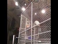 Jeff Hardy 鐵籠賽後於後台昏迷