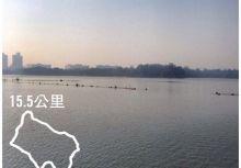 【晨跑地圖】高雄澄清湖環湖跑