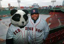 功夫熊貓的奇蹟三分球