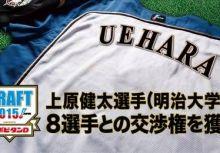 2015日本火腿選秀結果簡評