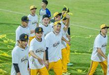 [CPBL]  黃袍光鮮亮麗的背後  中信兄弟需努力之處仍多