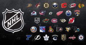 【運動紛爭解決制度系列4-1】國家冰球NHL之申訴仲裁制度