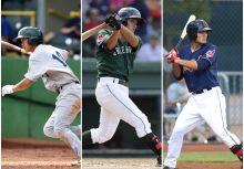 【MiLB】2015年台灣小聯盟選手簡介(3)二游三人眾