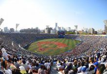 [央聯訊息] 橫濱球場全面天然草皮化,最快可能於下季更新完畢