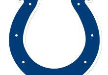 <NFL球隊介紹> 美聯南區-印城小馬隊 Indianapolis Colts