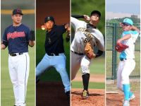 【MiLB】2015年台灣小聯盟選手簡介(4)投手部門1