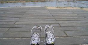 [日本旅行] 鴨川。慢跑。跳烏龜