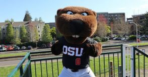 [圖片] Corvallis Baseball Season