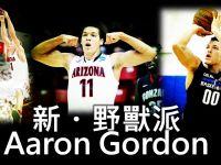 新 - 野獸派: Aaron Gordon