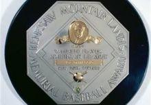 MLB個人獎項大預測(美聯篇)