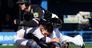 日本職棒正式採用「Buster Posey條款」