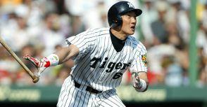 除了偉大生涯,金本知憲和新井貴浩還有什麼共同點?