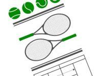 網球場上的「規則問題」與「事實問題」