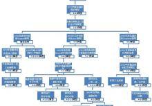 第十六課  一張圖看懂足球陣型發展史