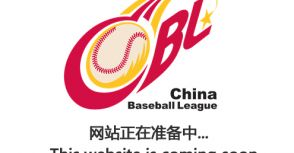 中國棒球職業化對台灣棒壇的影響?!
