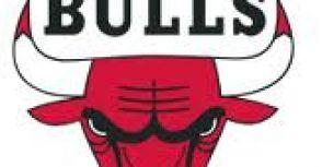 我們是專門踢館的-芝加哥公牛