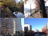 東京2大跑步熱點 — 皇居、目黑川 #跑到著迷